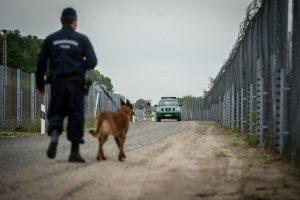Análisis de la política migratoria en Europa