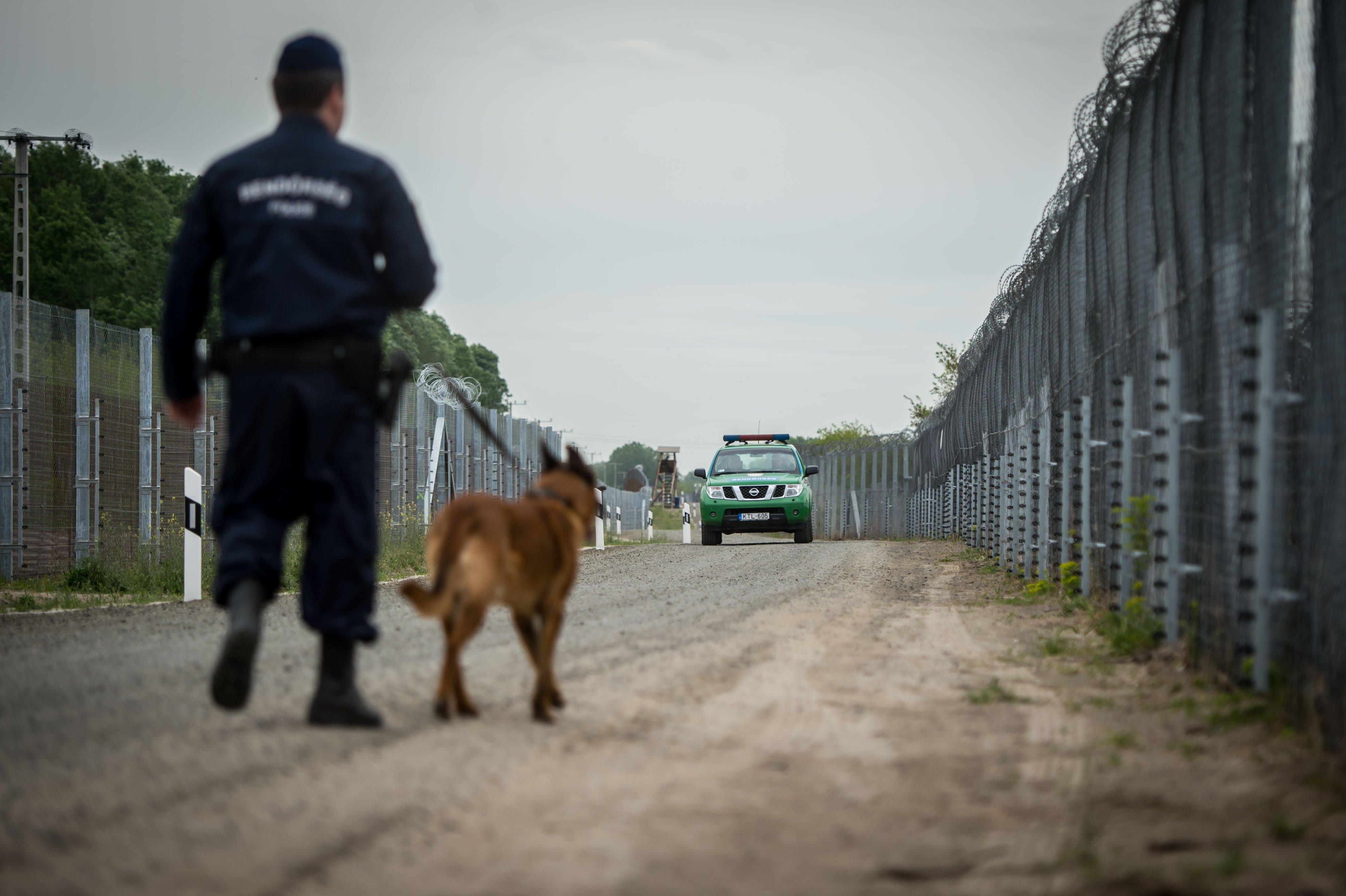 Perímetro fronterizo en la frontera entre Hungría y Serbia, en Röszke. Foto / Gergely Botár/kormany.hu